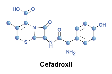 Cefadroxil is a broad-spectrum antibiotic of the cephalosporin type, effective in Gram-positive and Gram-negative bacterial infections. It is a bactericidal antibiotic.