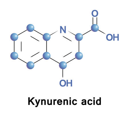 Kynurenic acid, KYNA or KYN, is a product of normal metabolism of amino acid L-tryptophan with neuroactive activity, it acts as an antiexcitotoxic and anticonvulsant