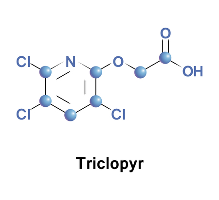 systemic: Triclopyr, trichloropyridinyloxyacetic acid, is an organic compound in the pyridine group that is used as a systemic, foliar herbicide and fungicide.