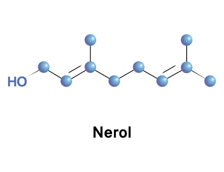 Nerol is a monoterpene found in many essential oils such as lemongrass and hops