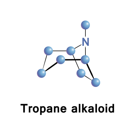 anticholinergic: Tropane alkaloids are a class of bicyclic alkaloids and secondary metabolites that contain a tropane ring in their chemical structure Stock Photo