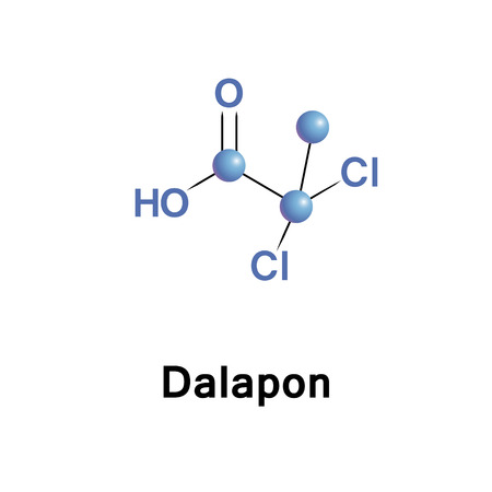 grasses: Dalapon is a selective herbicide used to control perennial grasses. The major use of dalapon is on food crops including sugarcane and sugar beets