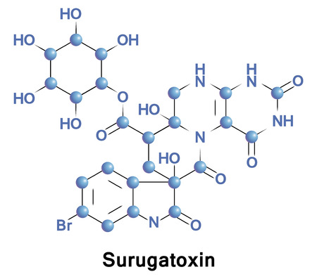 found it: Surugatoxin is a type of venom found in the mid-gut digestive gland of a carnivorous gastropod. It functions as a ganglionic blocker of nicotinic acetylcholine receptors