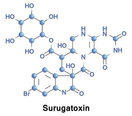 Surugatoxine is een soort gif dat wordt aangetroffen in de spijsverteringsklier in het midden van de darm van een vleesetende gastropode. Het functioneert als een ganglion-blokkerende agent van nicotine-acetylcholine-receptoren
