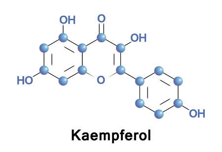 Kaempferol is a natural flavonol, a type of flavonoid, found in a variety of plants derived foods.