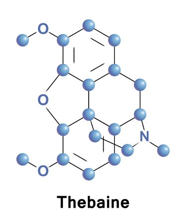 Thebaine, also known as codeine methyl enol ether, is an opiate alkaloid.