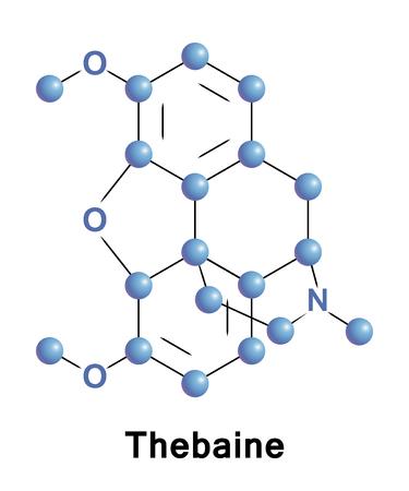 Thebaine, also known as codeine methyl enol ether, is an opiate alkaloid.
