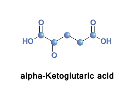 alpha-Ketoglutaric acid is one of two ketone derivatives of glutaric acid. It is the keto acid produced by deamination of glutamate, and is an intermediate in the Krebs cycle.