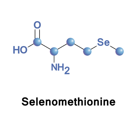 Selenomethionine is a naturally occurring amino acid. The L-selenomethionine enantiomer is the main form of selenium found in Brazil nuts, cereal grains, soybeans