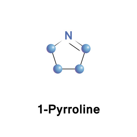 Pyrrolines, also known under the name dihydropyrroles, are three different heterocyclic organic chemical compounds that differ in the position of the double bond. It is a cyclic imine Stock Photo
