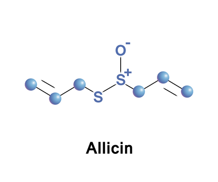 Allicin is an organosulfur compound obtained from garlic, a species in the family Alliaceae, it is potential to treat various kinds of multiple drug resistance bacterial infections