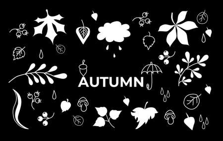 Vector set of autumn drawings on a black background. White outline and silhouette. Doodle of various leaves and berries, mushrooms and text. Set of elements for the fall season. Vector