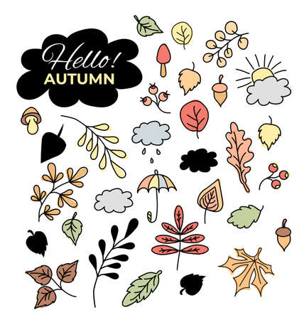 Vector set of autumn drawings. Contour and color - various leaves and branches, berries and acorns, the sun and clouds, an umbrella and rain. Use for autumn design and decoration.Vector