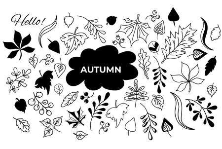 Vector set of autumn drawings. outline and silhouette. Doodle of various leaves and berries and text. Set of elements for the fall season. Use for autumn design and decoration. Vector