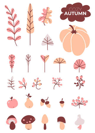 Colored set of autumn drawings. Cozy autumn. Various leaves and branches, berries and acorns, mushrooms and pumpkin, an apple and a pear. Use for fall design and decoration. Vector. Isolated objects 矢量图像