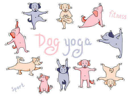 Yoga pets. Big colored set of dog yoga. cute Puppies athletes get up in an asana and meditate, do sports exercises and do exercises. Vector illustration. Isolated on white background