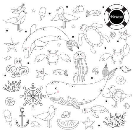 Large set of marine animals and plants. Underwater inhabitants - whale and dolphin, octopus and fish, starfish and jellyfish, turtles and seagulls, shells and corals. Vector. Line, outline. Isolated