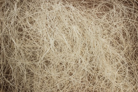 tangled: Texture background, tangled sisal fibers, thin threads