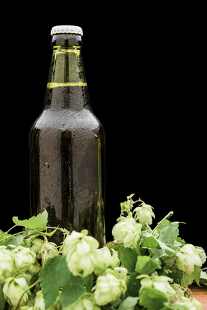 bottle of beer with hops on the table 写真素材