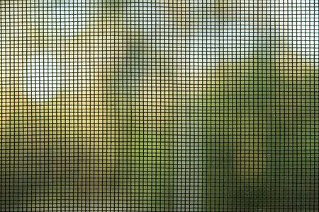 mosquito net on the windows, doors