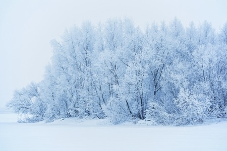 Winter landscape with snow-covered trees in Russia Imagens - 71641043