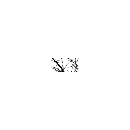 silhuette: Symbol - double exposure with black trees isolated on white background.Vector  illustration.Black and white double exposure silhuette numbers combined with photograph of nature.Letters of the alphabet Illustration
