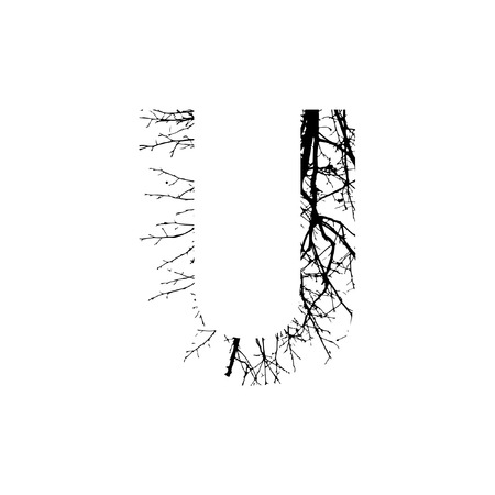 Letter U double exposure with black tree isolated on white background.Vector  illustration.Black and white double exposure silhouette numbers combined with photograph of nature.Letters of the alphabet