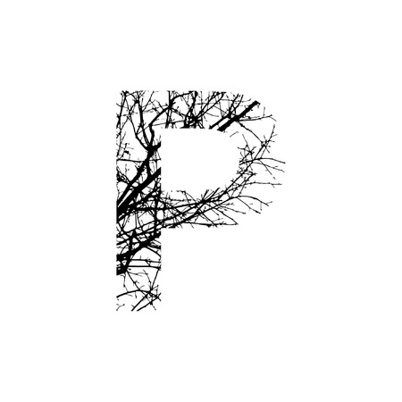 Letter P double exposure with black trees isolated on white background.Vector  illustration.Black and white double exposure silhuette numbers combined with photograph of nature.Letters of the alphabet