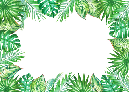 Watercolor frame with leaves of coconut palm tree isolated on white background. Illustration for design of wedding invitations, greeting cards with empty space for text. 스톡 콘텐츠