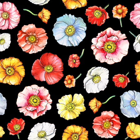 Watercolor seamless pattern with multicolor poppy flowers on black background Stock Photo