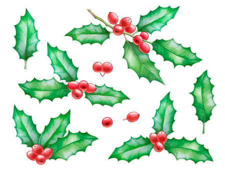 Watercolor hand drawn illustrations of holly tree branches with berries isolated on white background.