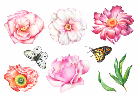 Watercolor hand drawn summer set of flowers, butterflies and green leaves