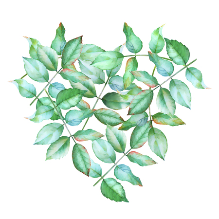 Watercolor hand drawn green leaves in a heart shape. Heart shaped natural background.