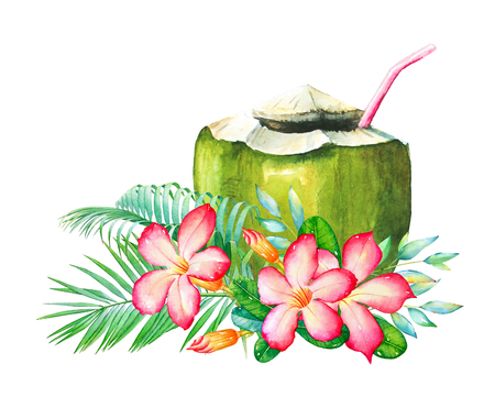 Watercolor drawing  of the tropical flowers, leaves and coconut coctail isolated on white background.