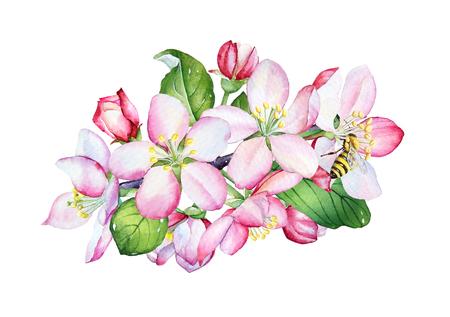 Flores de manzana acuarela y hojas verdes sobre fondo blanco. Foto de archivo