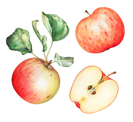 Group of red apples with green leaves on white background