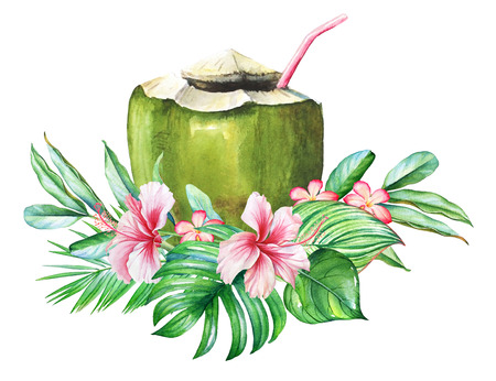 Tropical design with watercolor plants and a coconut with straw. Stok Fotoğraf
