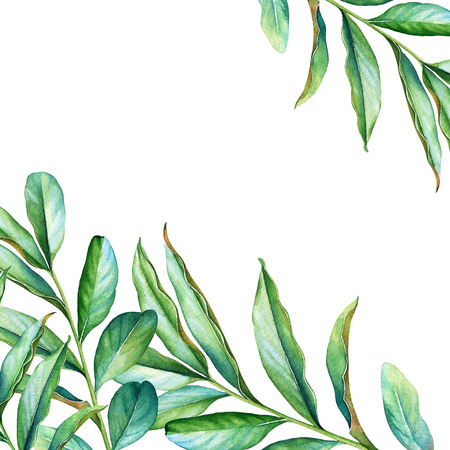 Floral design with watercolor leaves on white background.