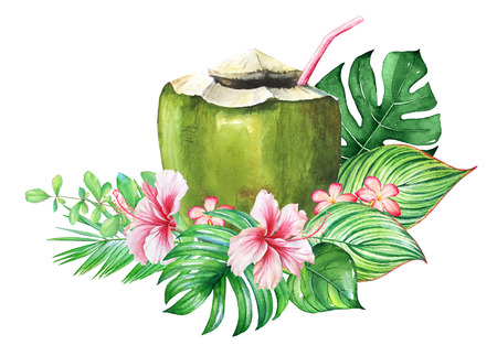 Tropical plants with watercolor plants and a coconut cocktail Stok Fotoğraf