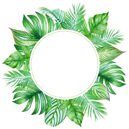 Round frame with tropical plants on white background. Stok Fotoğraf