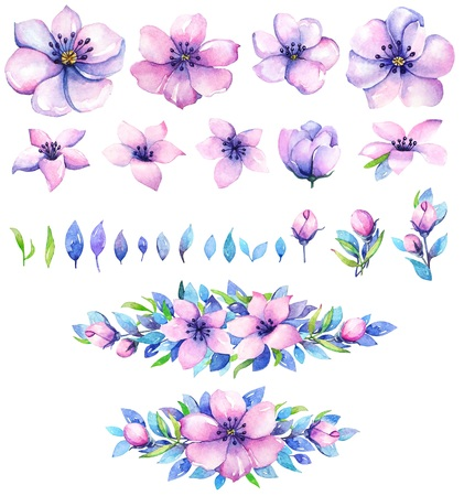 Collection of watercolor floral elements for design. Purple flowers with blue leaves.