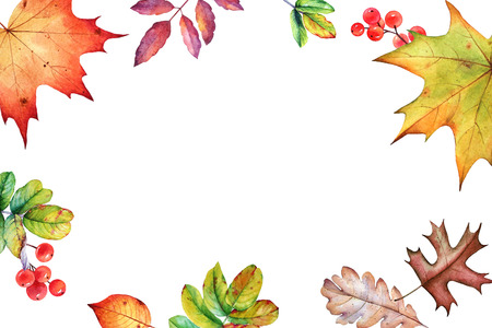 Watercolor background with autumn leaves and berries with copy space