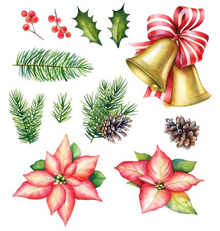 Watercolor floral set for Christmas design.