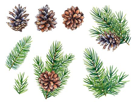 Watercolor set of cones and fir tree branches. Stock fotó