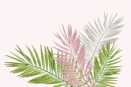 Watercolor palm leaves in pastel colors. Stock fotó