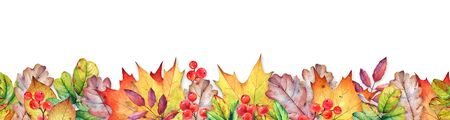 Seamless border with autumn leaves and berries. Stock fotó