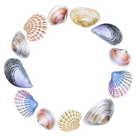 Round frame with watercolor sea shells.