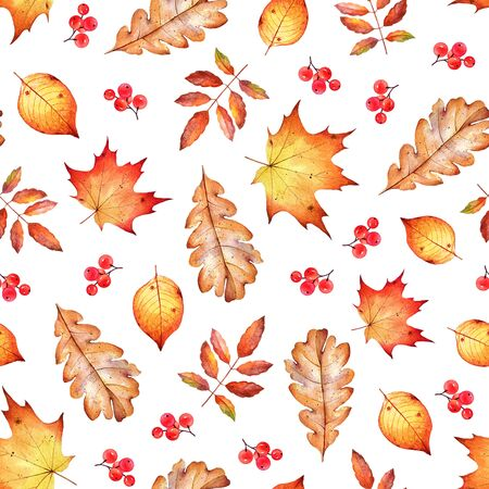 Seamless pattern with autumn leaves and berries. Stockfoto