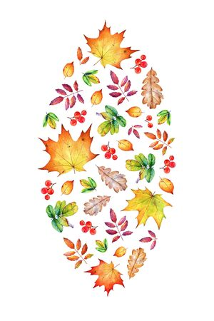 Decorative composition with autumn leaves and berries.