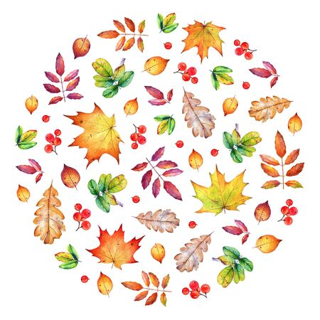 Round composition with autumn leaves and berries.